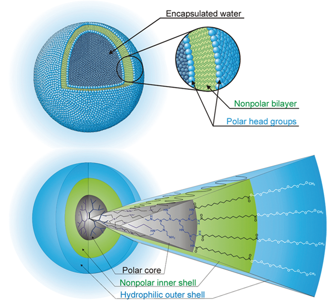 Zulassung von Nanomaterialien vom Typ DendroSol: Dendritische amphiphile Nanocarrier / Beitrag aus Pharm. Ind. 79, Nr. 11, 1539-1546 (2017)