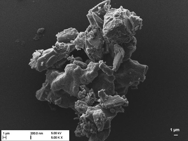 Sprühtrocknung inhalierbarer, multifunktionaler Formulierungen zur Behandlung von Biofilmen bei Mukoviszidose / Teil I, Beitrag aus Pharm. Ind. 83, Nr. 9, 1246–1253 (2021)