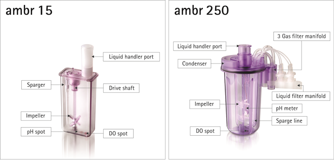 Single-use Mini Scale Bioreactor Technology / How it Enables Higher Productivity of Protein-based Therapeutics in the Pharmaceutical Industry