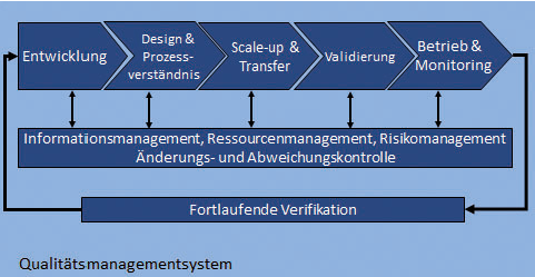 Rahmenbedingungen und Voraussetzungen für die Umsetzung der Prozessvalidierung