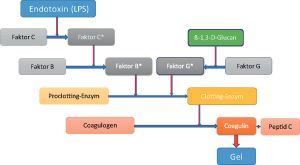 Prüfung auf Bakterien-Endotoxine